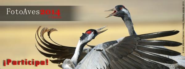 La SEO presenta la edición 2014 del concurso Fotoaves, con el patrocinio de Swarovski Optik