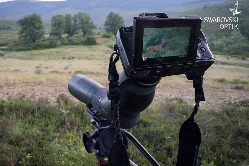 05 Visores de caza y ópticas Swarovski Optik | Esteller Distribuidor en España y Portugal | Swarovski Optik