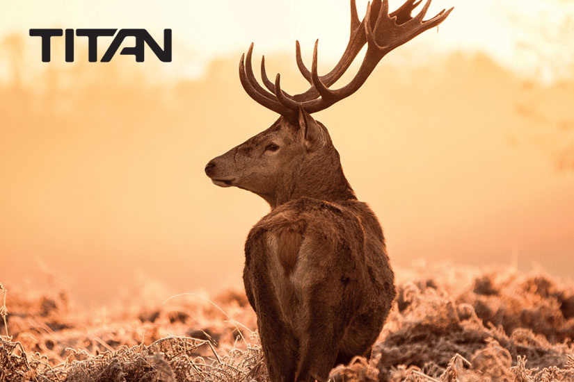 titan_web_esteller_05
