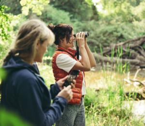 observación-aves-dG-Swarovski Optik